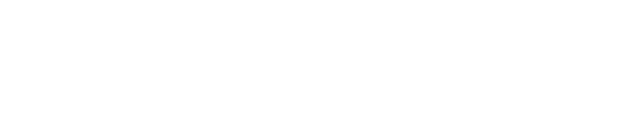 ROI Marketing LLC